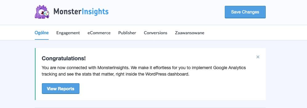 Konfiguracja MonsterInsights